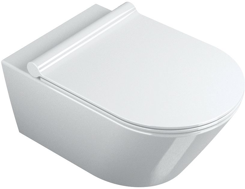 WC SUSPENDU ZERO 55CM CAT.NEWFLUSH BLANC
